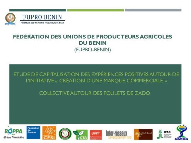 FÉDÉRATION DES UNIONS DE PRODUCTEURS AGRICOLES DU BENIN (FUPRO-BENIN) ETUDE DE CAPITALISATION DES EXPÉRIENCES POSITIVES AU...