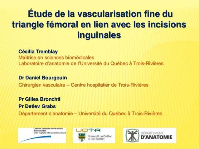 Étude de la vascularisation fine du triangle fémoral en lien avec les incisions inguinales Cécilia Tremblay Maîtrise en sc...