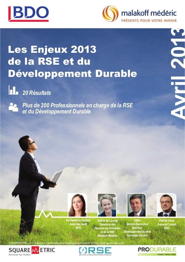 Les Enjeux 2013de la RSE et duDéveloppement Durable           20 Résultats           Plus de 200 Professionnels en charge ...