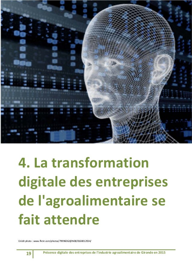 19 Présencedigitaledesentreprisesdel'industrieagroalimentairedeGirondeen2015   4.Latransformation digital...