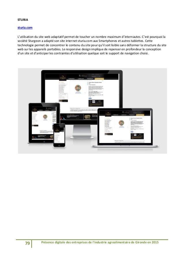 Etude présence digitale des entreprises de l'agroalimentaire de Gironde - CCI Bordeaux - 09 06 2015