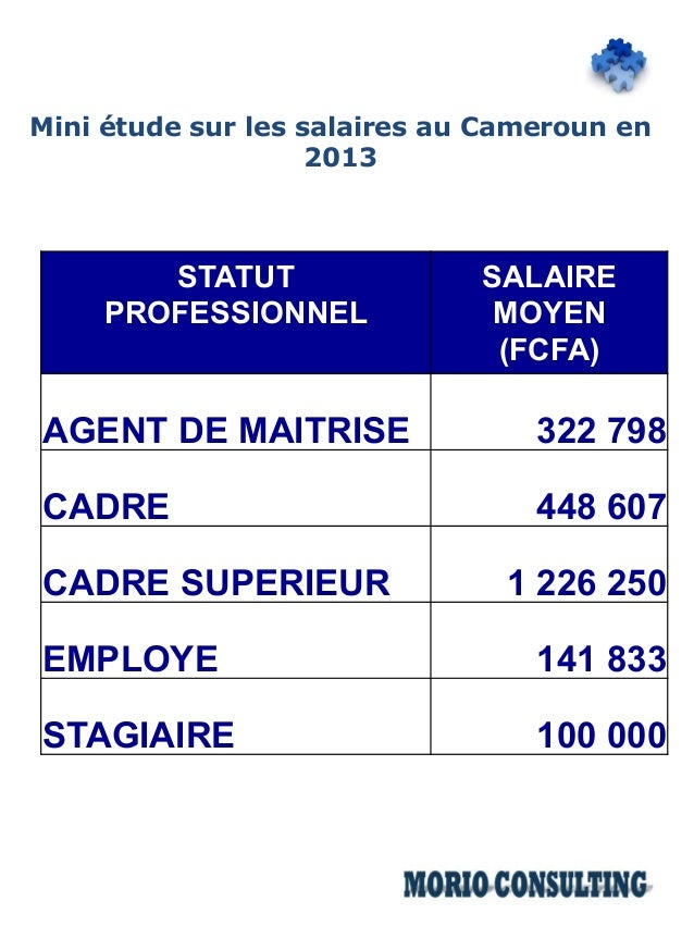 mini 233 tude salariale 2013