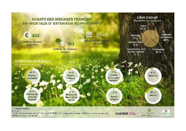 Achats des Français en fleurs et plantes au printemps