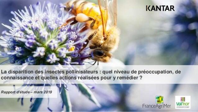 La disparition des insectes pollinisateurs : quel niveau de préoccupation, de connaissance et quelles actions réalisées po...