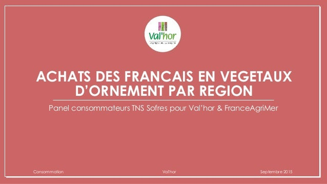 ACHATS DES FRANCAIS EN VEGETAUX D'ORNEMENT PAR REGION Panel consommateurs TNS Sofres pour Val'hor & FranceAgriMer Consomma...