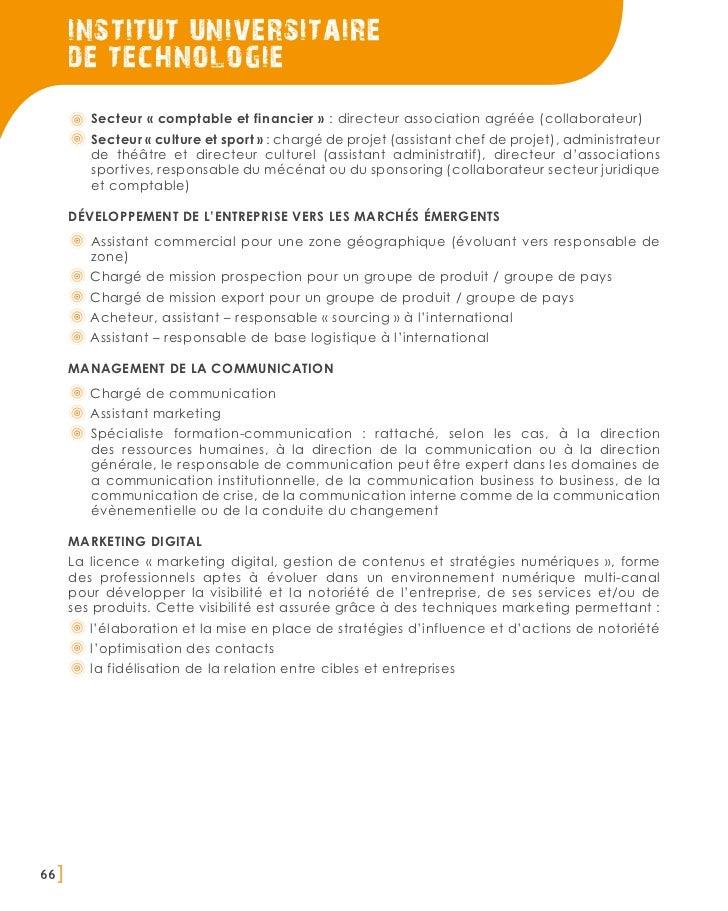 institut universitaire       de technologie          Secteur « comptable et financier » : directeur association agréée (co...