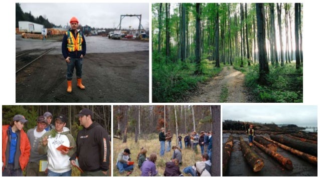 Mobile Technology Integration in an Applied Science Program: Forestry goes Paperless Slide 3