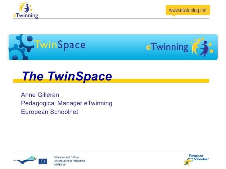 The TwinSpace Anne Gilleran Pedagogical Manager eTwinning European Schoolnet