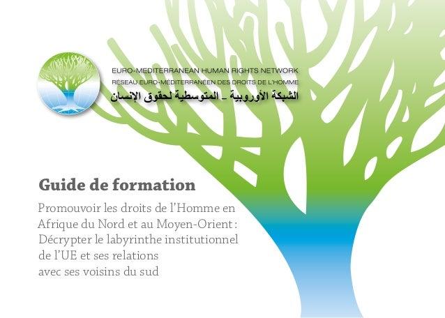 Guide de formation Promouvoir les droits de l'Homme en Afrique du Nord et au Moyen-Orient: Décrypter le labyrinthe instit...