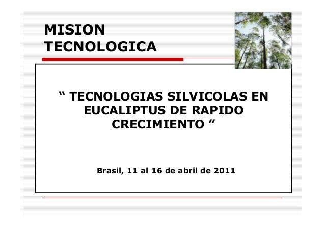 """MISION TECNOLOGICA """" TECNOLOGIAS SILVICOLAS EN EUCALIPTUS DE RAPIDO CRECIMIENTO """" Brasil, 11 al 16 de abril de 2011"""