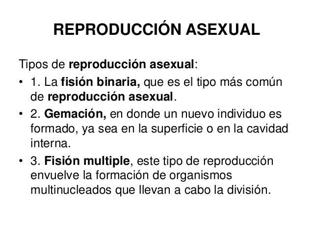 Reproduccion asexual fision multiple