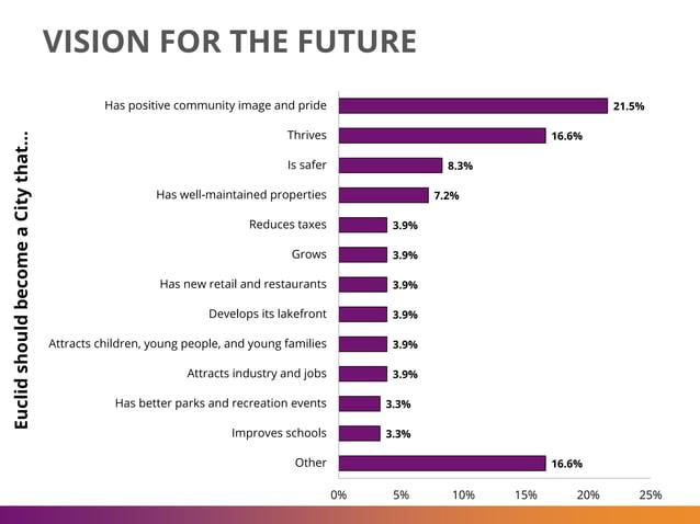 VISION FOR THE FUTURE 21.5% 16.6% 8.3% 7.2% 3.9% 3.9% 3.9% 3.9% 3.9% 3.9% 3.3% 3.3% 16.6% 0% 5% 10% 15% 20% 25% Has positi...