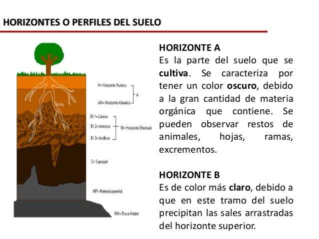 La formaci n de los suelos for A que se denomina suelo