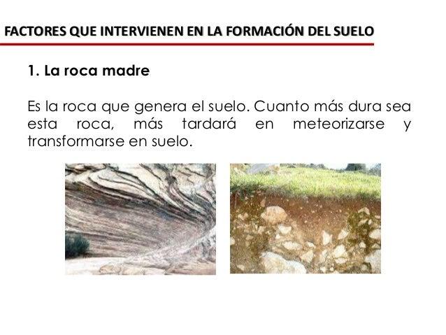 La formaci n de los suelos for Formacion de la roca