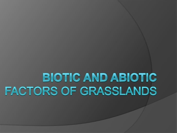 Abiotic factors of Grasslands   Each abiotic component influences the number    and variety of plants that grow in an eco...