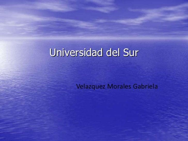 Universidad del Sur<br />Velazquez Morales Gabriela<br />