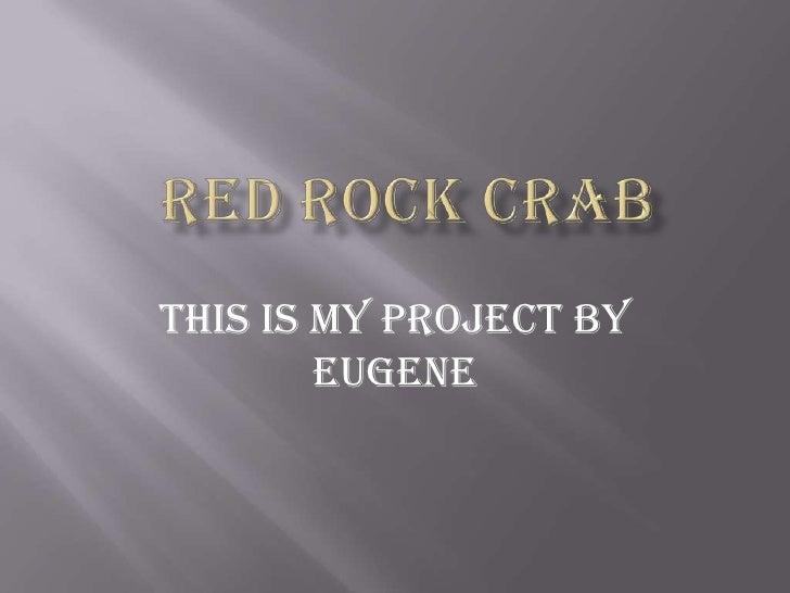 Red Rock Crab<br />This is my project by Eugene<br />