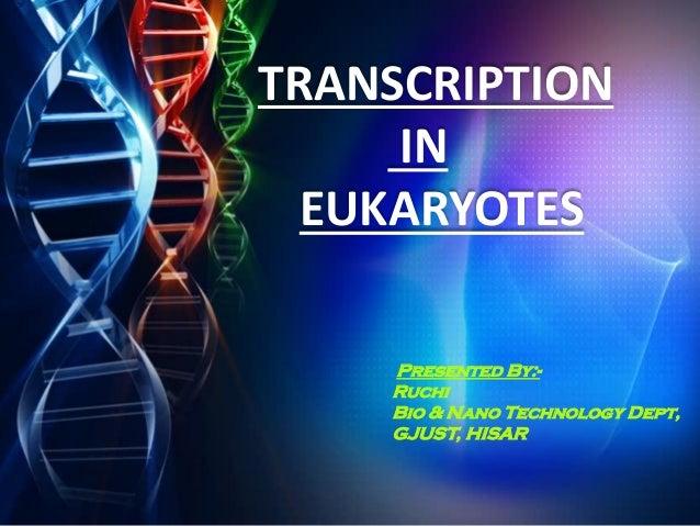 TRANSCRIPTION IN EUKARYOTES Presented By:- Ruchi Bio & Nano Technology Dept, GJUST, HISAR
