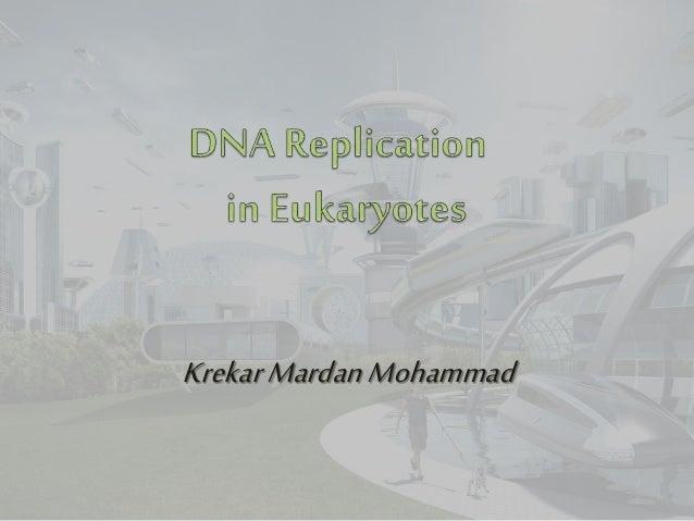 KrekarMardanMohammad