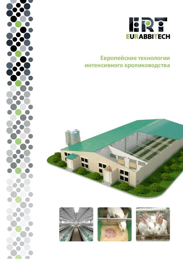 Европейские технологии интенсивного кролиководства