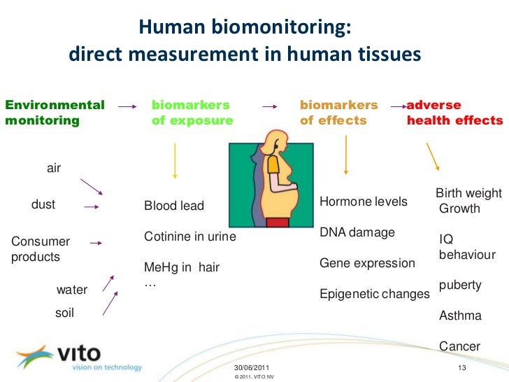 8b282fce1cca0 Human biomonitoring  direct measurement in human tissuesEnvironmental  biomarkers ...