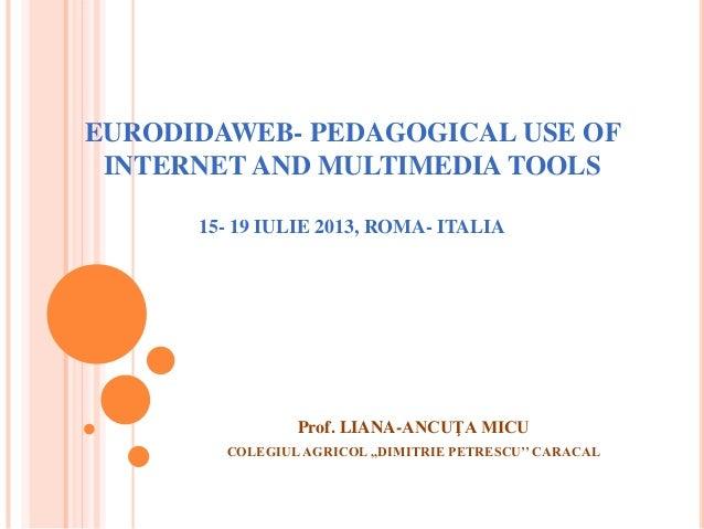 EURODIDAWEB- PEDAGOGICAL USE OF INTERNET AND MULTIMEDIA TOOLS 15- 19 IULIE 2013, ROMA- ITALIA Prof. LIANA-ANCUŢA MICU COLE...