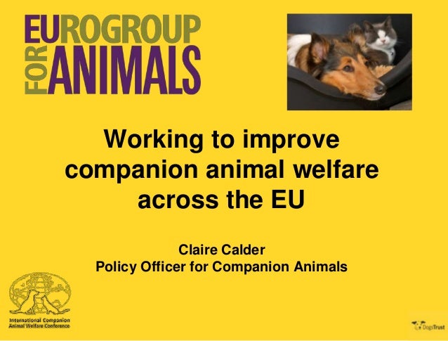 Working to improve companion animal welfare across the EU Claire Calder Policy Officer for Companion Animals