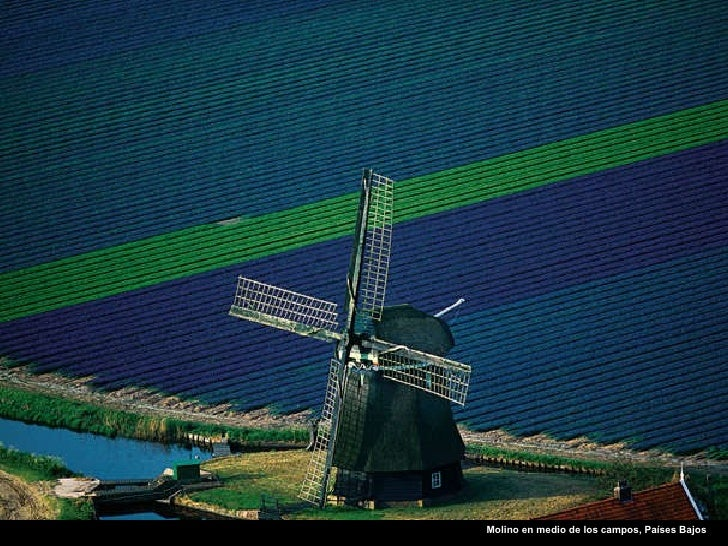 Molino en medio de los campos, Países Bajos