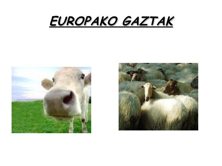 EUROPAKO GAZTAK