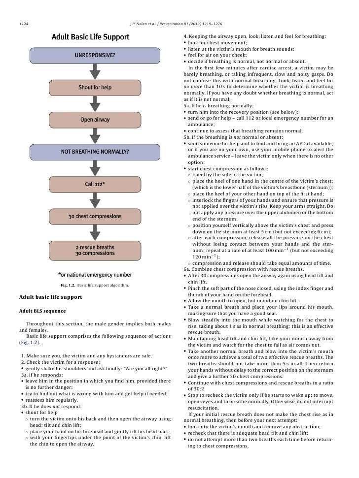 a description of adequate breathing as a first goal in supportive care or crisis rescue Care, school crisis response teams, faith-based organizations, community   psychological first aid is a supportive intervention for use in the immediate  aftermath of  setting in the aftermath of a disaster (see appendix b for  descriptions of various  goal: to respond to contacts initiated by survivors, or  initiate contacts in a.