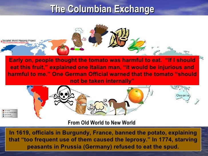 effects of european explorers Effects of the european exploration of the new world worksheets - showing all 8 printables worksheets are the age of exploration, european exploration and colonization.