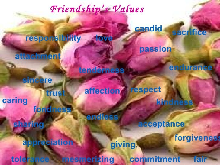 Friendship's Values   responsibility appreciation passion sincere attachment kindness fondness sacrifice endurance respect...