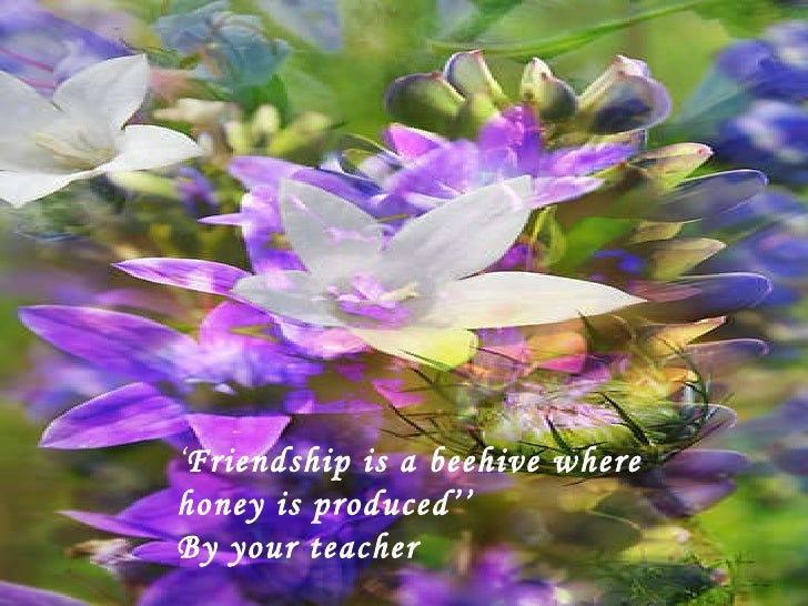 ' Friendship is a beehive where honey is produced'' By your teacher