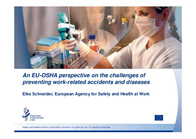 An EU-OSHA perspective on the challenges of  preventing work-related accidents and diseases  Elke Schneider, European Agen...