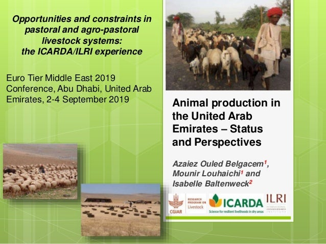 Animal production in the United Arab Emirates – Status and Perspectives Azaiez Ouled Belgacem1, Mounir Louhaichi1 and Isab...