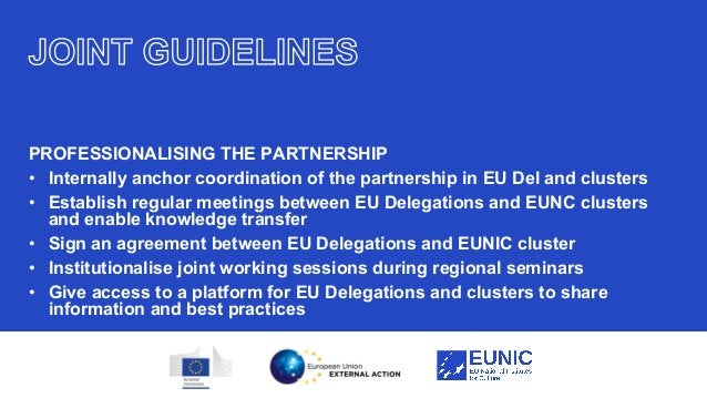 21 PROFESSIONALISING THE PARTNERSHIP • Internally anchor coordination of the partnership in EU Del and clusters • Establis...