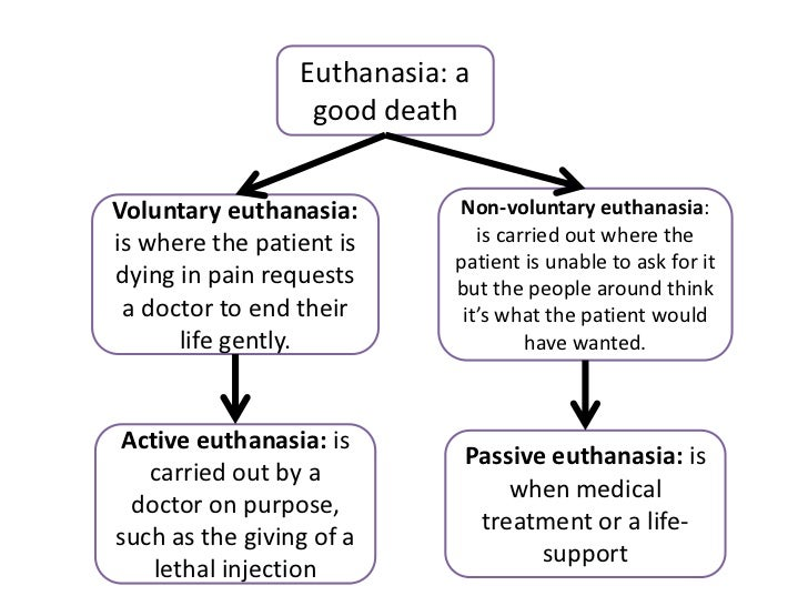 an argument in favor of euthanasia as a necessary relief Provides relief of pain the more they favor assisted suicide or euthanasia my opponent claims this is an argument for euthanasia.