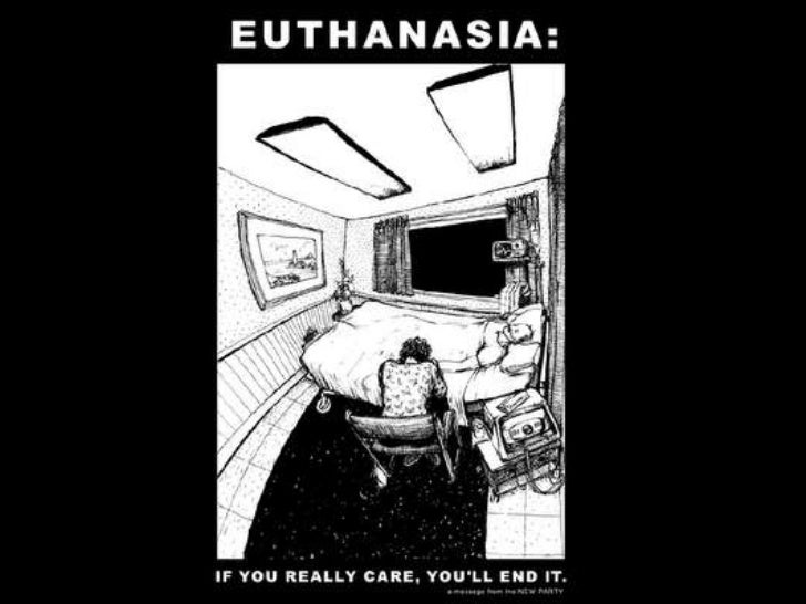 Igcse Global Perspectives Project Euthanasia