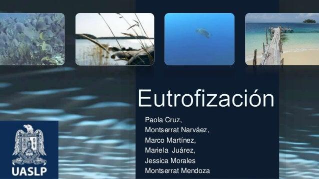 Paola Cruz, Montserrat Narváez, Marco Martínez, Mariela Juárez, Jessica Morales Montserrat Mendoza