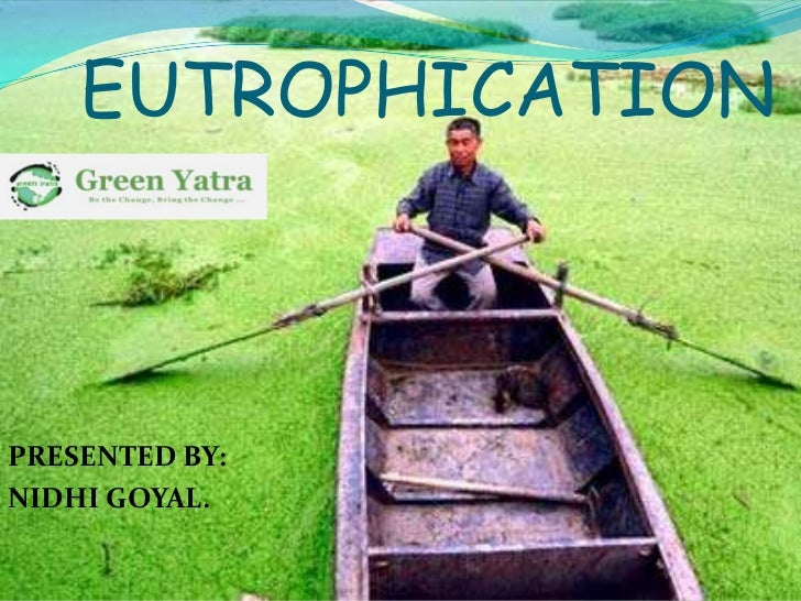 EUTROPHICATIONPRESENTED BY:NIDHI GOYAL.