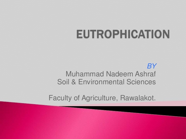 cultural eutrophication essay Biology assignment help, ecology, explain how human activities can cause an imbalance in biogeochemical cycling and lead to problems such as cultural eutrophication.