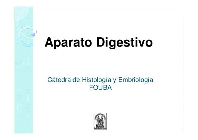 Cátedra de Histología y Embriología FOUBA Aparato Digestivo