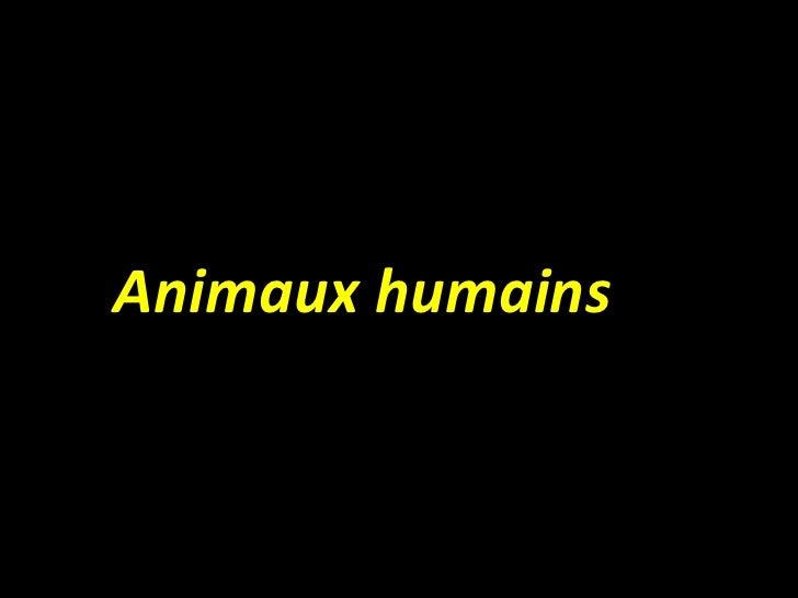<ul><li>Animaux humains </li></ul>
