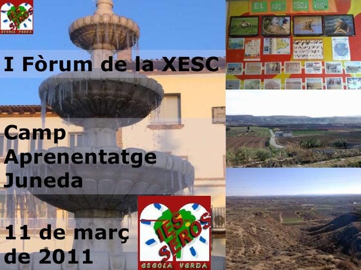 El curs 2000-2001 vam iniciar a l'IES Seròs el projecte ESCOLA VERDA <ul><ul><li>IES SERÒS </li></ul></ul><ul><li>escola v...