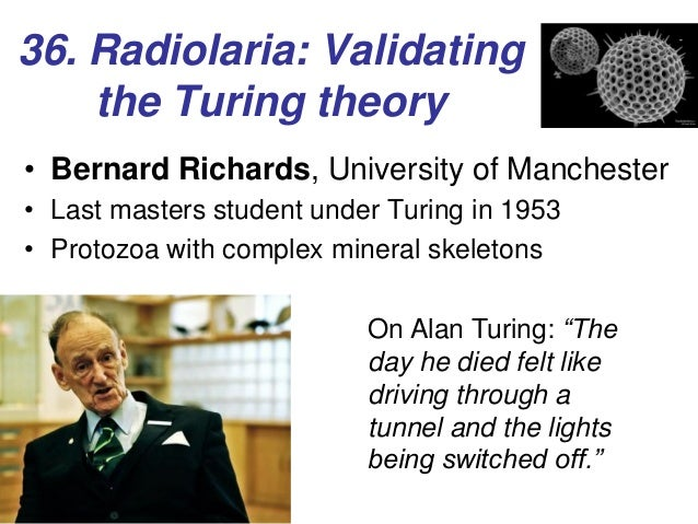 diagram of radiolaria alan turing virtuoso visionary radiolaria slide diagram
