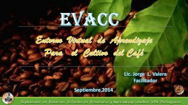 Evacc Entorno virtual de aprendizaje para el cultivo de café, orientado a la enseñanza en línea bajo la plataforma Moodle,...