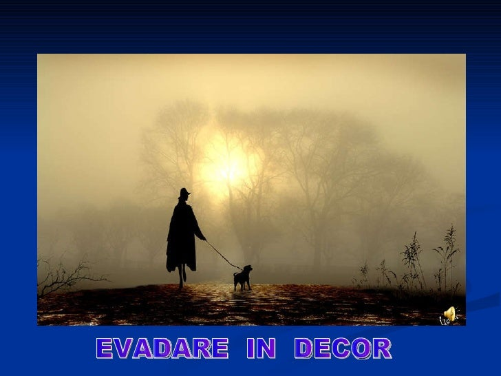 EVADARE  IN  DECOR