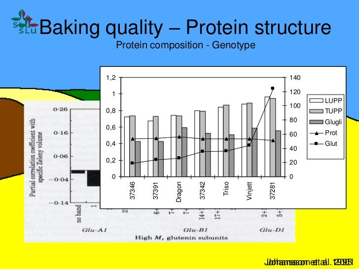 Gluten protein structures: Variation in wheat grain and at various applications Slide 3