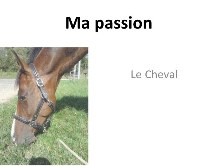 Ma passion       Le Cheval