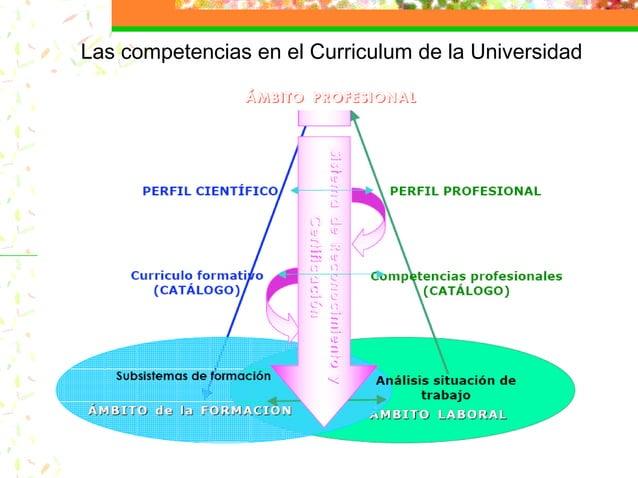 Las competencias en el Curriculum de la Universidad